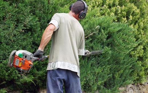 entretien des espaces verts carr